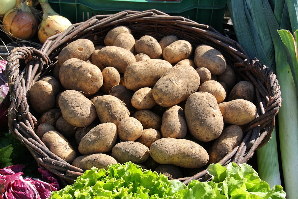 The Best Potato Growing Kits And Bags For Home